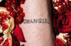 Drangsal – Harieschaim