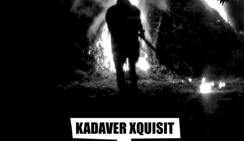 Kadaver Xquisit