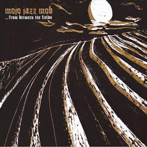 Mojo Jazz Mob – ...From between the Fields | (c) Julia Eckel